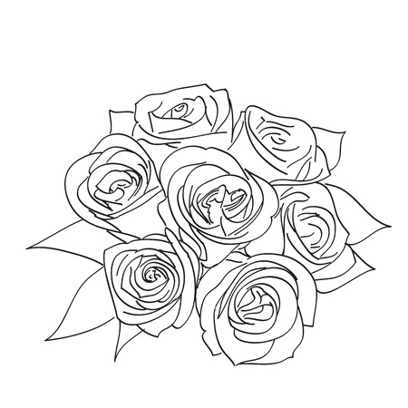 Rose with leaves.  Vector
