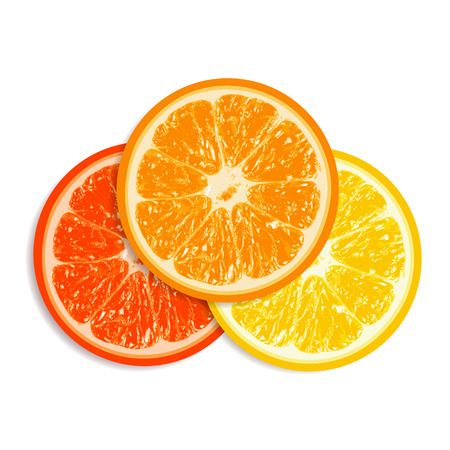 grapefruit: Fresh grapefruit, orange and lemon isolated on white background. EPS10 vector. Illustration