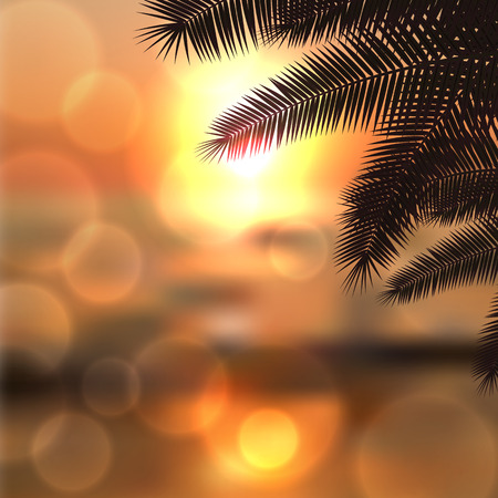 horizon over water: Sea sunset with palm tree leaves and light on lens.