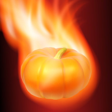 cucurbit: Burning pumpkin on dark background. vector.
