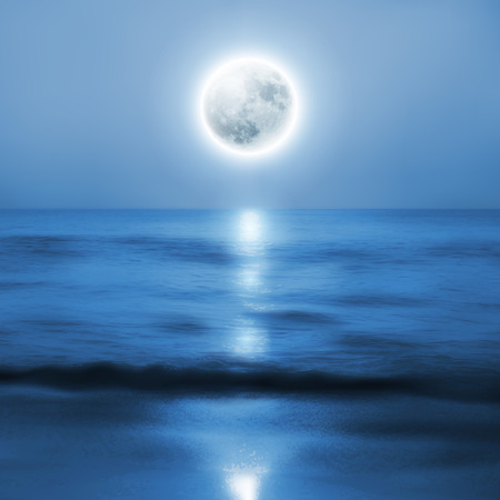 horizon over water: Beach with full moon at night. vector.