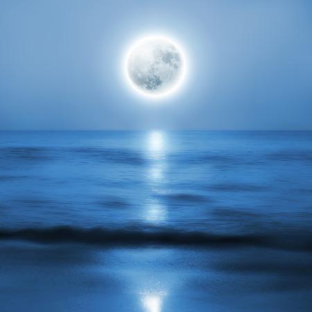 Playa con luna llena en la noche. vector.