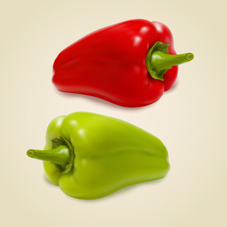 appetite: Set of sweet peppers on gray background