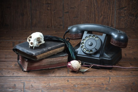 witchcraft: Cat skull, old books, dry rose, old telephone and crow quill on old wooden desk. Vintage witchcraft still life.