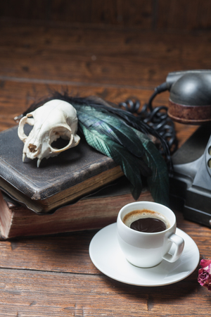 witchcraft: Cat skull, old books, dry rose and crow quill on old wooden desk. Vintage witchcraft still life.