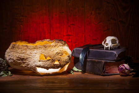 witchcraft: Dry pumpkin, cat skull on old books, dry rose, crow quill on red old wooden background. Vintage witchcraft still life.