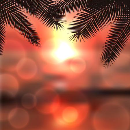 Sea sunset with palm tree leaves and light on lens, red summer background.