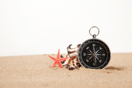 Compass, seastar and seashells in sand closeup
