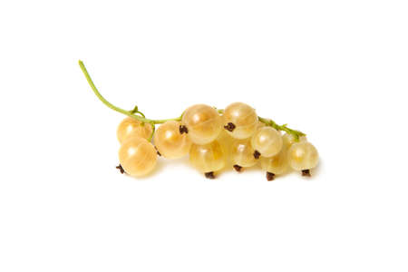 Some golden currants isolated on the white background