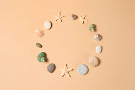 Seashell collection. Seashells, starfishes and stones in circle on brown background with space for text.