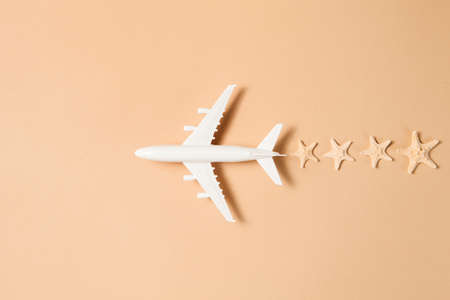 Flat lay design of travel concept with plane and trail made from starfishes on brown background with copy space.