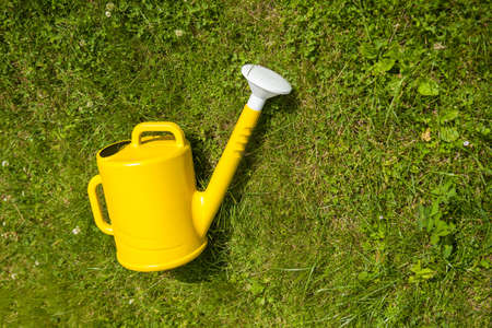 Yellow watering can in the grass. Watering can on the garden. Gardening concept.