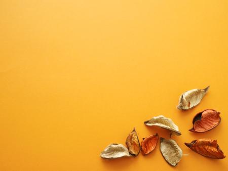describable: beechnuts on orange background