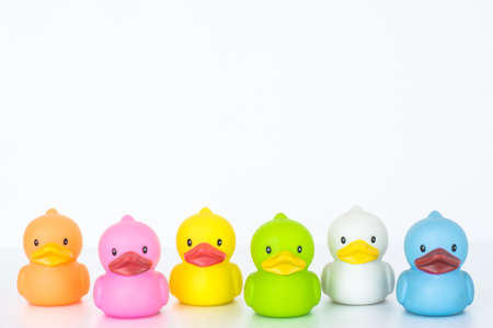 cute colorful duck isolated on white background photo
