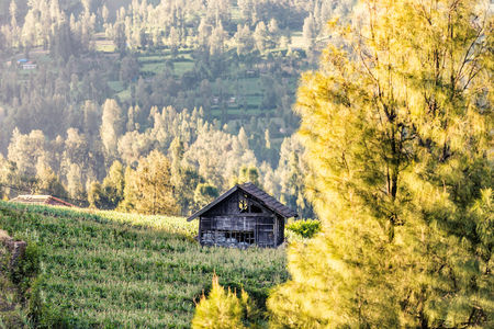 And old barn with beautiful view background at mount bromo Stock Photo