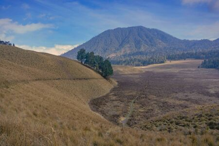 Amazing view road trail of hiker going or back from mountain at Semeru Mountan, Indonesia