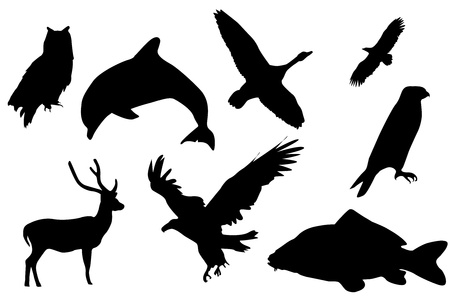 Eight black silhouettes of animals.
