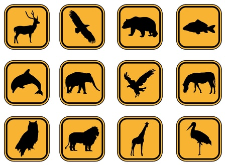 Vector graphic set of animal icons. Vector