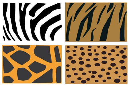 Detail illustration of animals fur pattern. Vector
