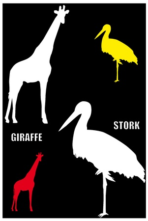Silhouettes of red giraffe and grey stork on the black background. Vector