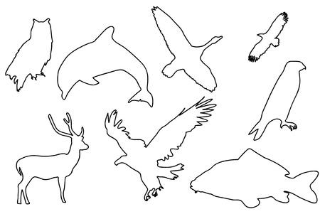 roe deer: Black silhouette of animals. Illustration