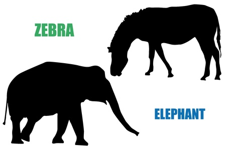 Silhouettes of black zebra and elephant. Vector