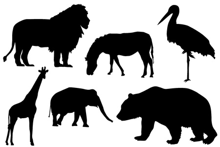 Detail black silhouette of wild animals. Vector