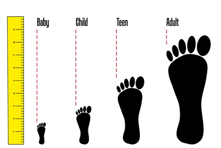 Detail of various sizes of foot from various age.