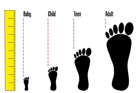Detalle de pie de varios años de diferentes tamaños. Ilustración de vector