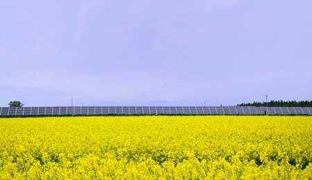 Yellow rape field with solar power station. Stock Photo - 9574384