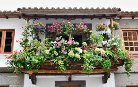 Typical balcony with flowers in the Teror town, Gran Canaria Reklamní fotografie - 23078519