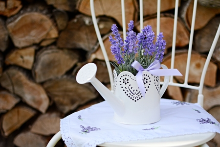 Lavender in the old metal can on the metal chair  Home decoration  photo