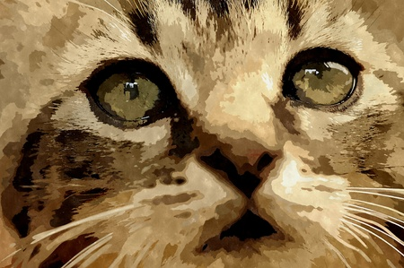 watercolour painting: Abstract watercolor digital generated painting of the cat head portarit.