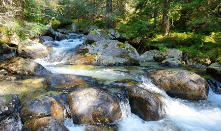 rocks water: Flowing water over rocks in the stream. Mountain stream flowing down from hill to valley. Stock Photo