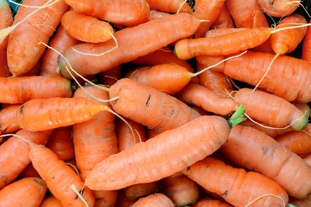Background from heap of the ripe fresh carrots. Stock Photo