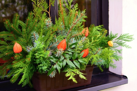Winter natural house decoration with coniferous branches in a pot on a windowsill.
