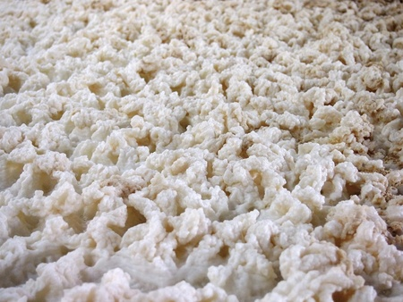 Closeup of a foam during fermenting of a beer in an open fermenters in a brewery.