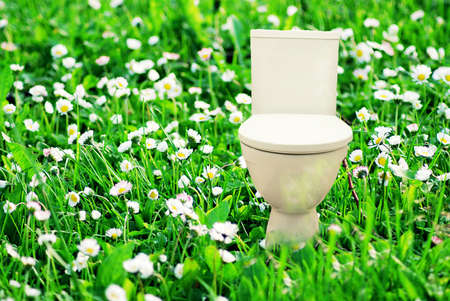 Abstract collage with fresh flush toilet bowl placed in the blooming green meadow, concept of fresh purity and ecology. 스톡 콘텐츠
