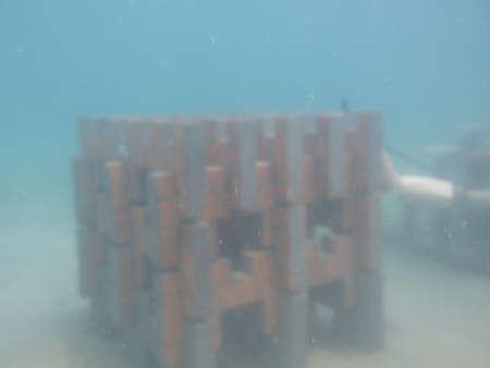 Artificial reef deployed at Redang island, Malaysia 写真素材