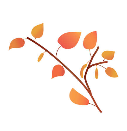 a birch twig in a gradient color. autumn foliage. texture gradient. vector. detail for printing and postcards