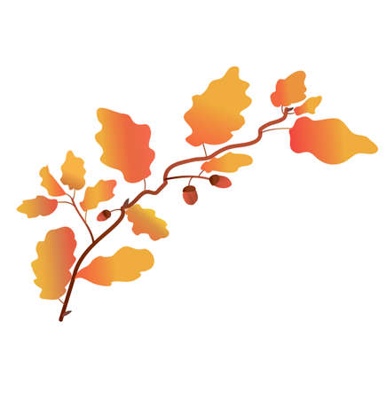 oak twig in gradient color. autumn foliage. texture gradient. vector. detail for printing and postcards. oak and acorns