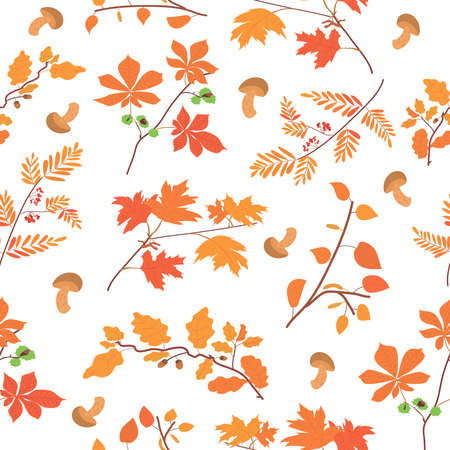 pattern with autumn foliage and mushrooms. tree branches: oak, maple, birch, chestnut and rowan. pattern for gift wrapping and for decorating postcards. bright red foliage.