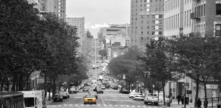 Yellow cab in Brooklyn, New York City  Standard-Bild