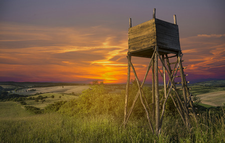 hunters tower: Hunters lookout tower on the field at sunset