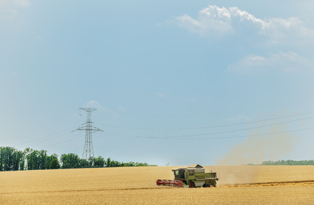 threshing: Combine harvester on a wheat field with a blue sky.