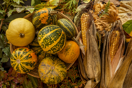 Autumn, Halloween background with leaves and pumpkins. Holiday concept with copy space. Standard-Bild