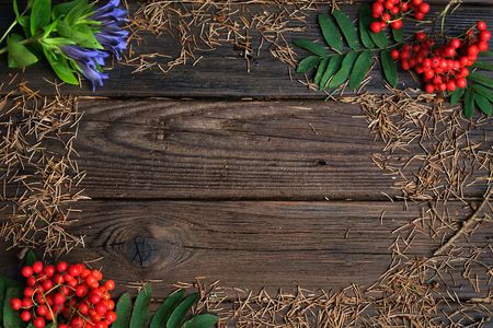 dry fir needles on wooden background with leaves, flowers and Rowan