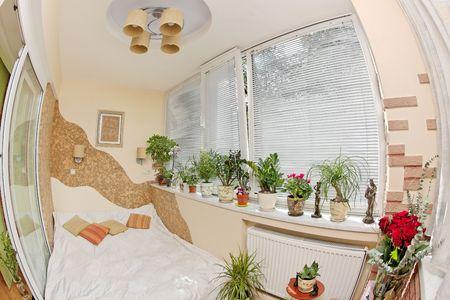 Sunny bedroom on balcony with Window and plants, fisheye view photo