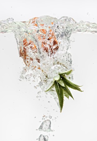 Small pineapple falling in water on white with air bubbles Stock Photo - 7319473