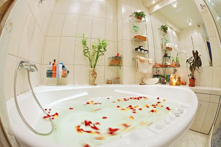 Modern bathroom in warm tones with bathtub and rose petals wide angle view Stock Photo - 7441284
